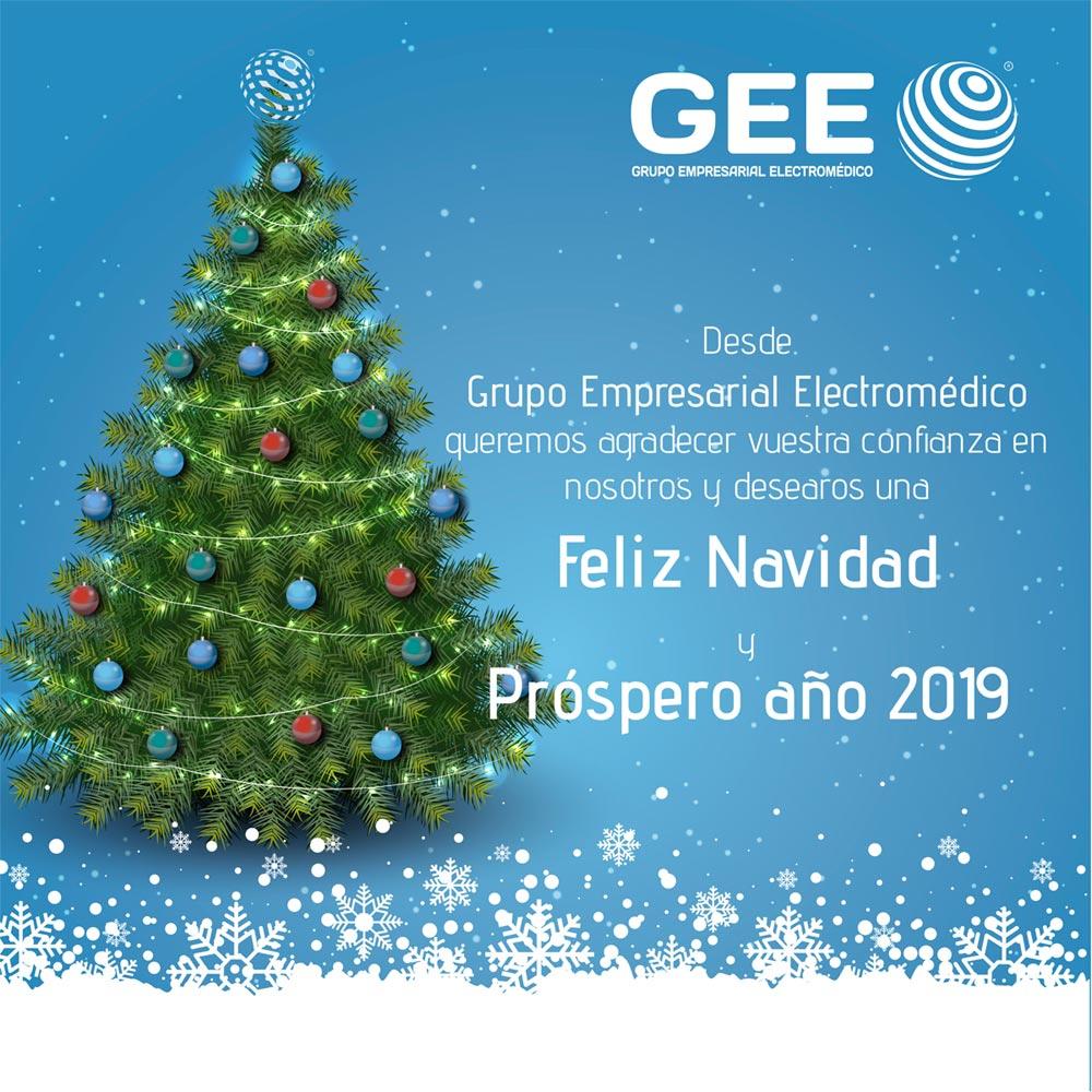 Imagenes De Navidad 2019.Feliz Navidad Y Prospero 2019 Grupo Empresarial Electromedico